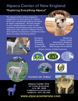 Alpaca Center of New England Poster